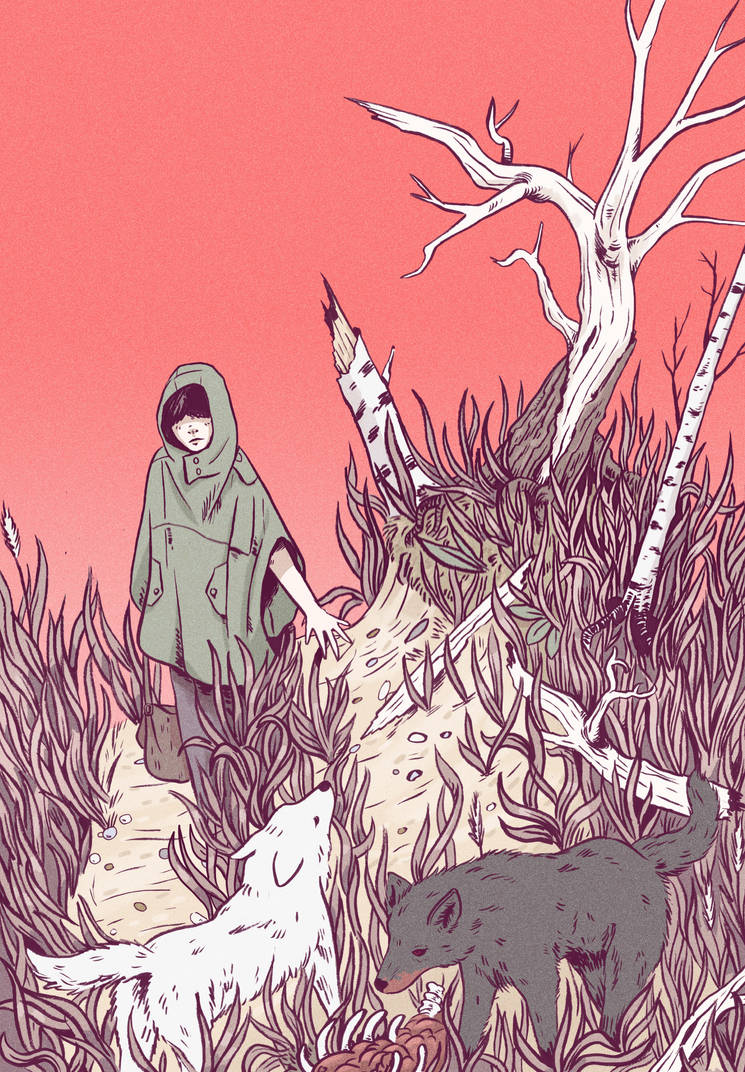 In the Wild Grass by Rimrack