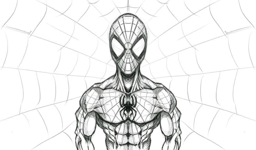 spidersketch by NA2SS