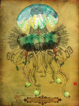Mirabilis V - Medusa Blau Ala Orsin