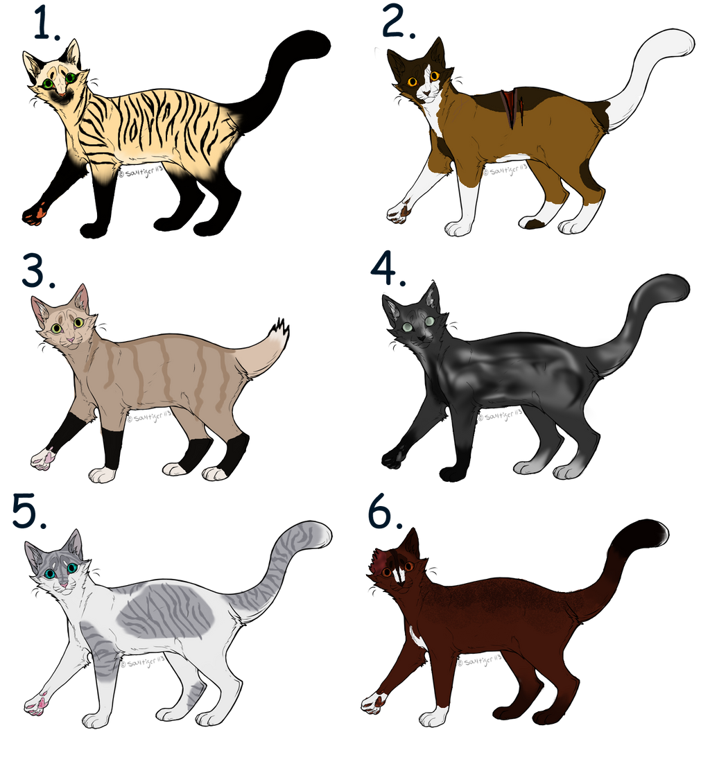 Niftysenpai Warrior Cat Project