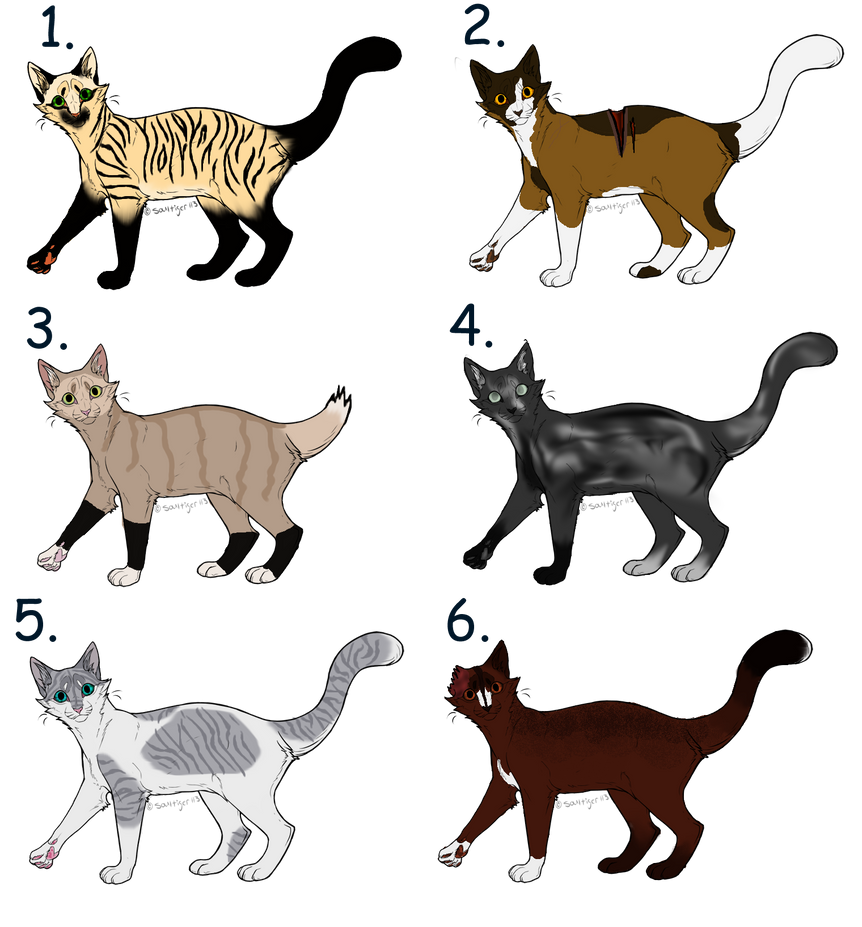 OC Warrior Cat Adopts Closed By Sukida Adopts On DeviantArt