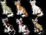 Cat Adoptables [Closed]