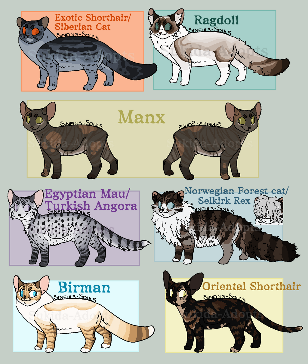 Closed | Feline Adopters #2 by Sukida-Adopts