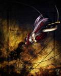 Comish 02 ::Broken Threads