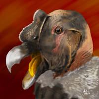 Andean condor painting in Krita 4.3