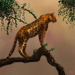 Leopard staring into the savannah by tmolnar0831