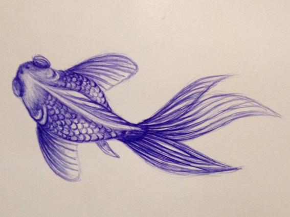 Fish by xxMiess