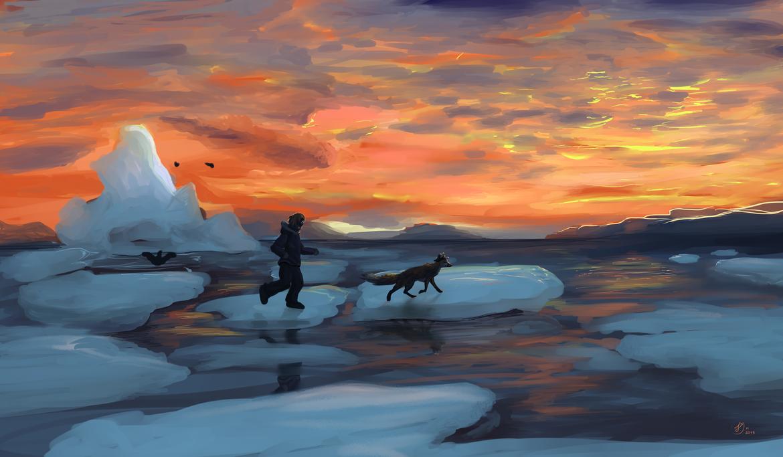 Run run Arctic contest by JBF1