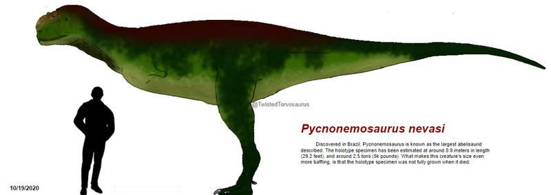 Pycnonemosaurus nevasi
