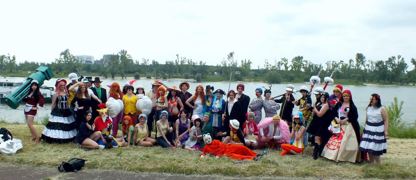 Dokomi 2015 One Piece Group by GonFreaks87
