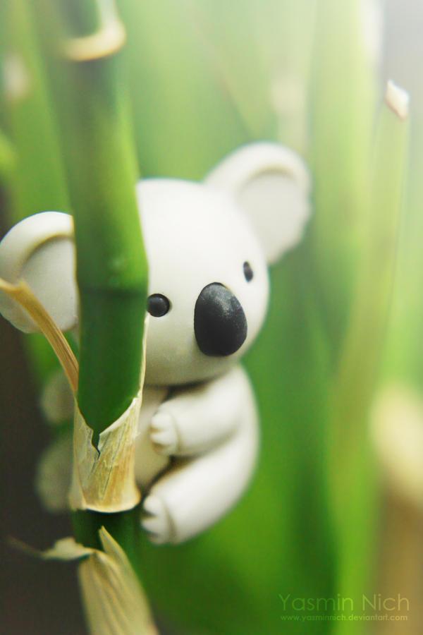 Klimbing Koala by YasminNich