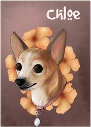 Pet Portraits: Chloe by HeSerpenty