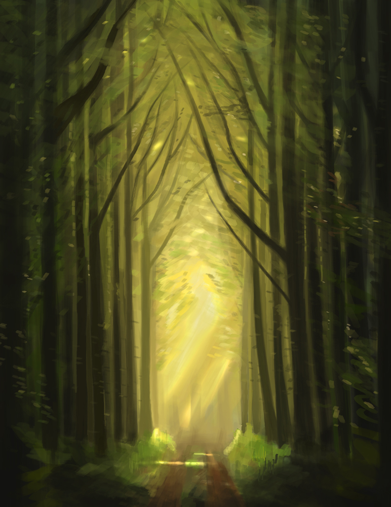 Forest Path - Study by Rex1us