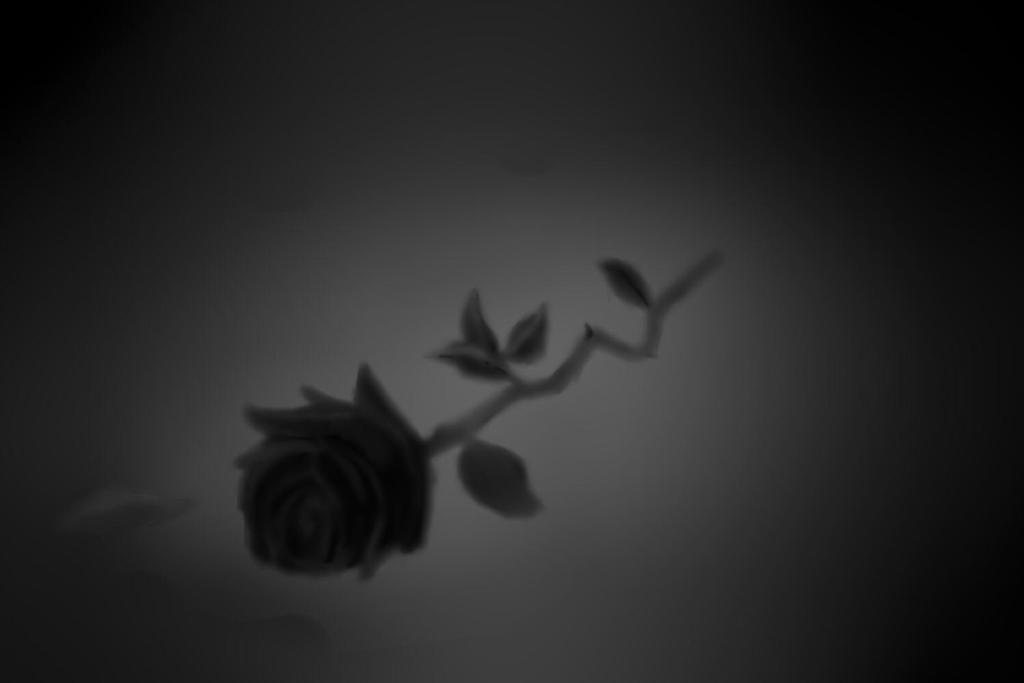 Black Rose by Sesshomaruco