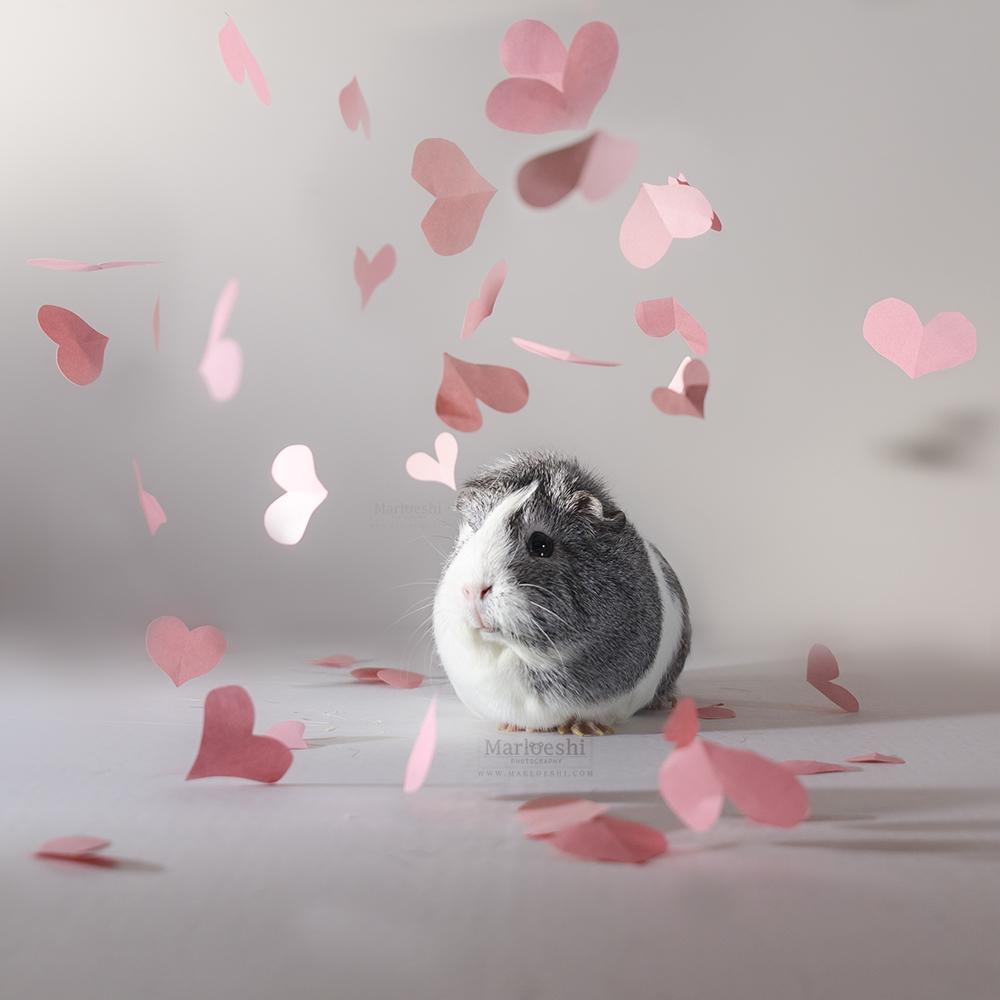 Sweet love by Marloeshi