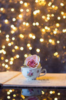 Bokehlicious Rose by Marloeshi