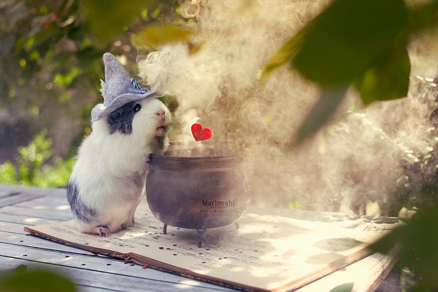 Love potion by Marloeshi
