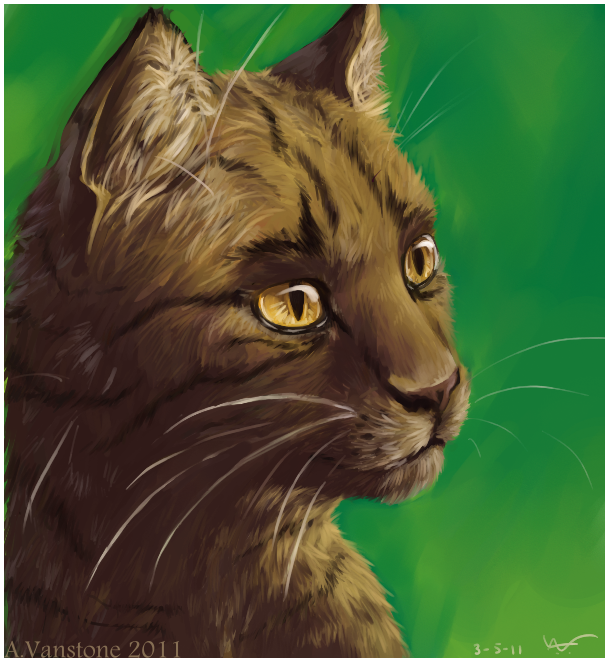 Warriors The Broken Code 3: Warrior Cats Onewhisker