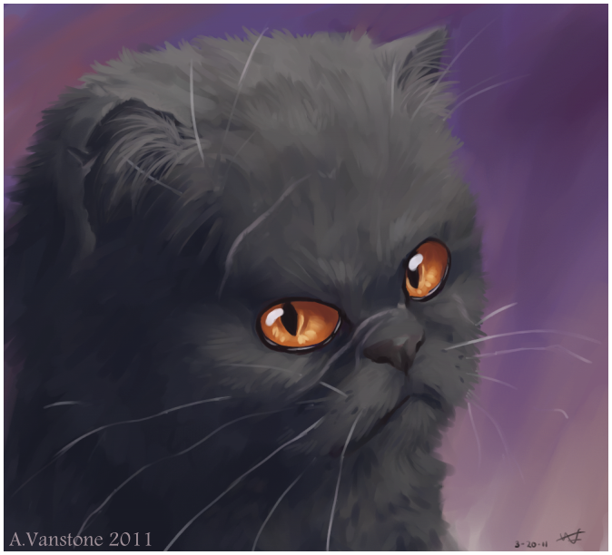 Yellowfang by ashkey