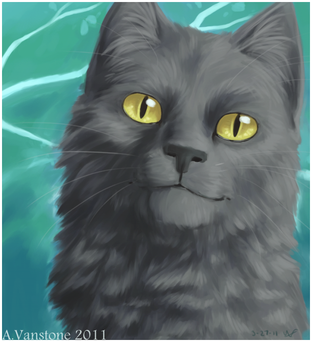 Graystripe By Ashkey On DeviantArt