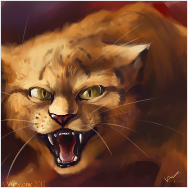 Lionblaze by ashkey