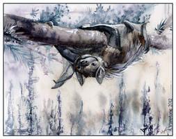 Chinook by ashkey