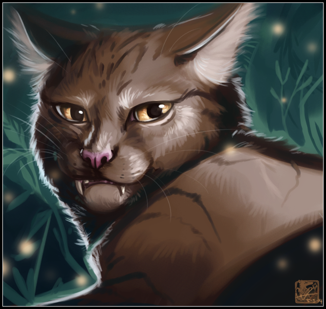 By Erin Hunter Warriors App: Warrior Cats By Erin Hunter
