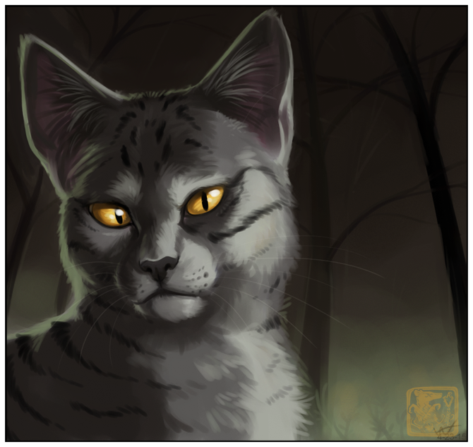 Warriors Of The Dawn Synopsis: The Theory Of Life (open, WindClan)