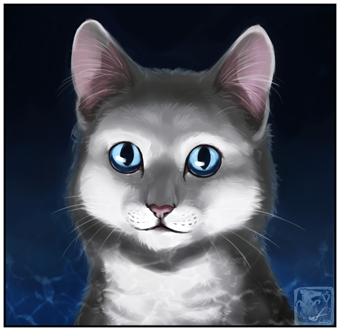 Dovewing by ashkey