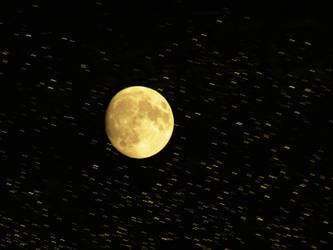 My Luna by Hpfpjf