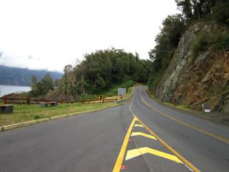 road to Huilo Huilo