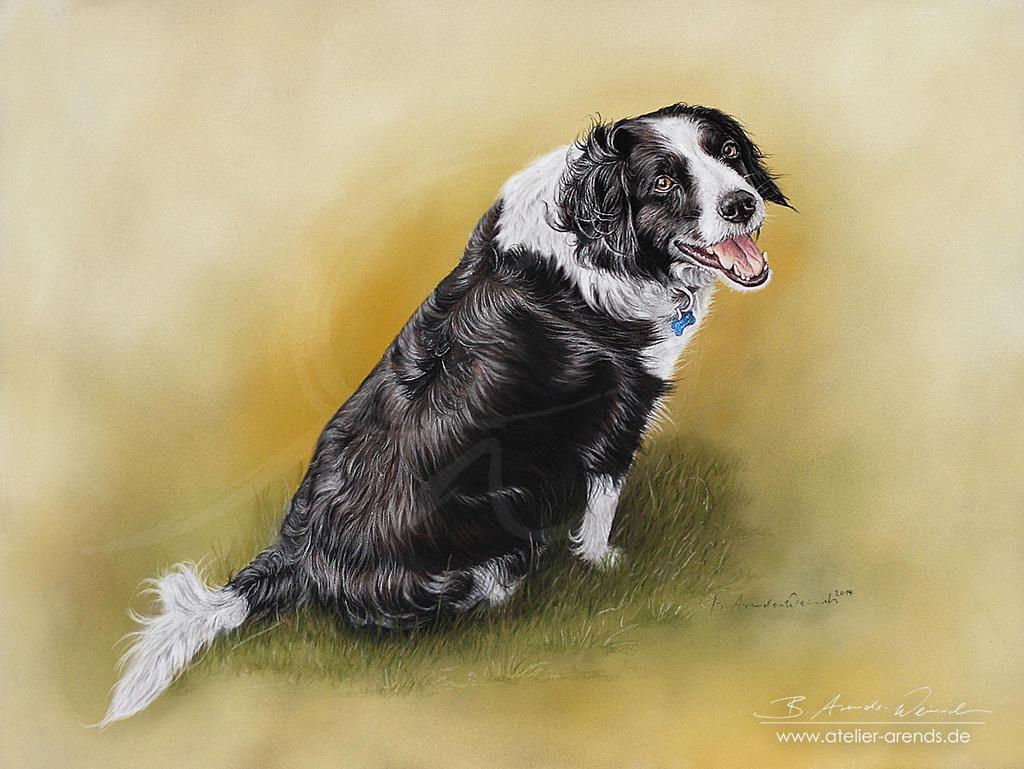 Pastel-dogportrait-Hundeportrait by AtelierArends
