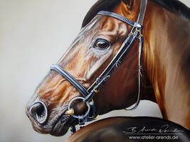 Oilportrait WIP by AtelierArends