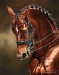 Dressage Horse Damon Hill NRW by AtelierArends