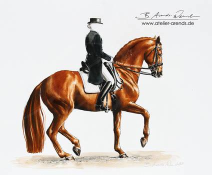 Dressage Horse in Piaffe [S]