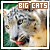 Big Cats Fanllisting - code
