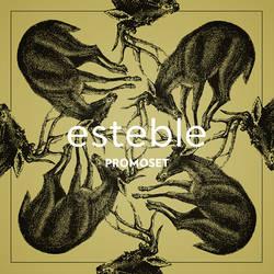esteble - Promomix May 2013 (front)