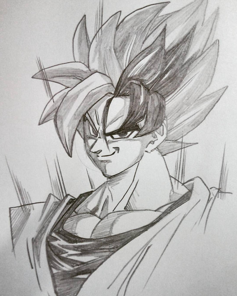 Goku's new transformation by bloodsplach