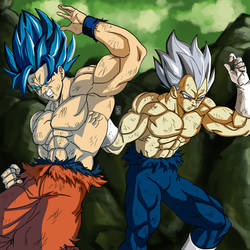 Goku-and-Vegeta by Blood-Splach