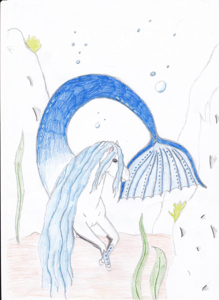 Bella Sara, Thunder's Courage # 6, By Felicity Brown p/B GC illus