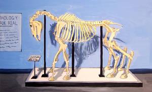 Sleipnir Anatomy Exhibit