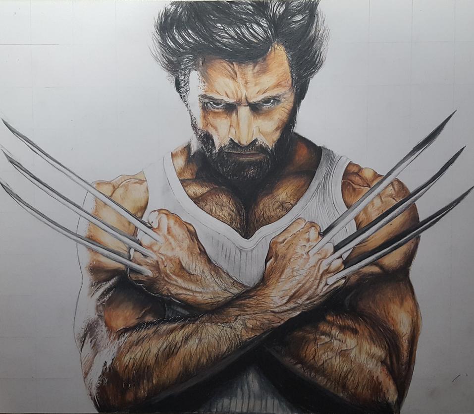 Eine Auftragszeichnung von Wolverine