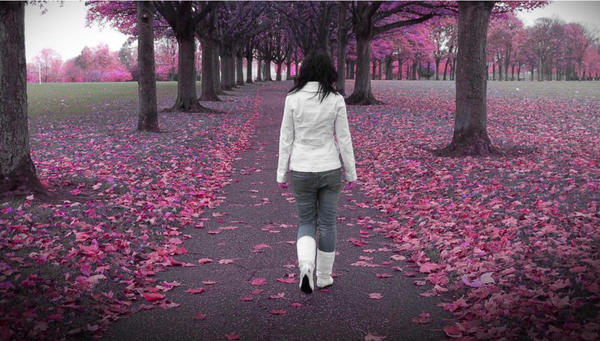 Walk in the park by thommy23