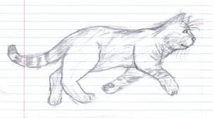 Minnow -drawing-