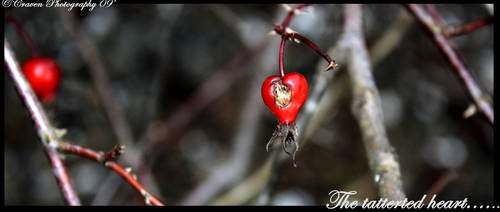 The Tattered Heart by KatCraven