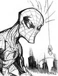Morning Sketch - Spiderman 01