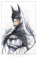 Batman Saucy by RobDuenas