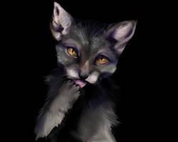 werewolf cat by cy-krio