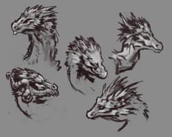 practice dragon heads