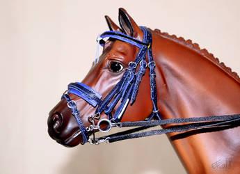 Blue dressage bridle by Afuze